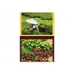STENSKI KOLEDAR TEA / COFFEE